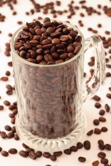 Free Coffee Beans In A Beer Cup Stock Photography - 14320212