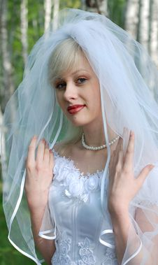 Free Portrait Of The Bride Royalty Free Stock Photography - 14321017