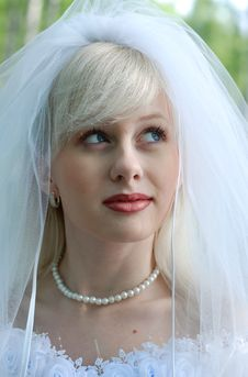 Free Portrait Of The Bride Stock Photography - 14321042