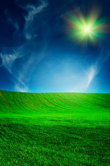 Free Beautiful Field By Spring. Stock Image - 14321341