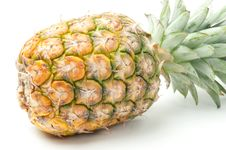 Free Pineapple Stock Photography - 14323072
