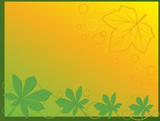 Free Leaf Abstract Background Royalty Free Stock Image - 14324166