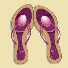 Free Beach Footwear. Vector Illustration Royalty Free Stock Photos - 14324208
