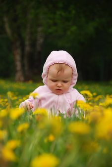 Free Little Girl In Park Stock Images - 14325044