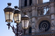 Free Notre Dame Streetlight Royalty Free Stock Photos - 14325668