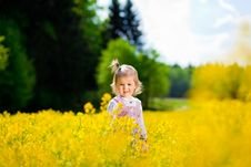 Girl On The Meadow Royalty Free Stock Photography