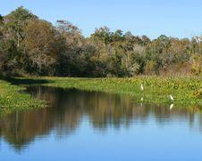 Free Scenic Waterway Stock Image - 14327241