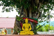 Free Statue Of Buddha Royalty Free Stock Photo - 14328425