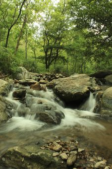 Free Lansang Waterfall Stock Image - 14328571