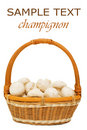 Free Wattled Basket With Field Mushrooms Isolated Stock Photo - 14331830