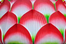 Free Red Lotus Background Royalty Free Stock Photography - 14330907