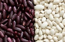 Free Mixed Dried Beans Royalty Free Stock Photography - 14331697