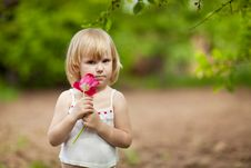 Free Girl With Tulip Stock Images - 14331904