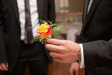 Free Flower And Hand Royalty Free Stock Image - 14332236