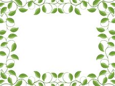 Free Floral Frame Royalty Free Stock Images - 14332649