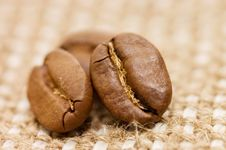 Free Coffee Bean On Sacking Stock Photos - 14332803