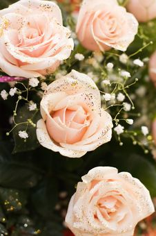 The Big Bouquet Of Pink Roses Stock Photos