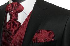 Free Dark Jacket, Tie Royalty Free Stock Photography - 14333027