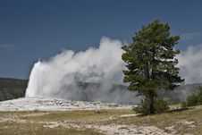Free Geyser Stock Photography - 14333782
