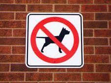 Free No Dog Royalty Free Stock Photo - 14334025