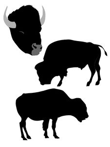 Free Silhouette Of Bison Stock Photo - 14335210
