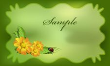 Free Postcard With Bug Royalty Free Stock Photo - 14335815