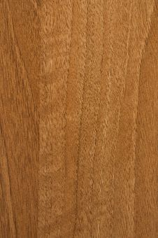 Free Wood Royalty Free Stock Photos - 14336388