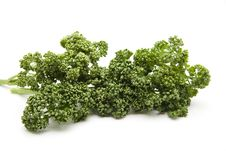 Free Parsley Royalty Free Stock Image - 14337406