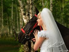 Free Portrait Of The Bride Stock Photography - 14337812