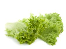 Free Fresh Lettuce Leaves Stock Images - 14338054