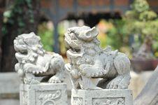 Free Double White Dragon Royalty Free Stock Photo - 14338385