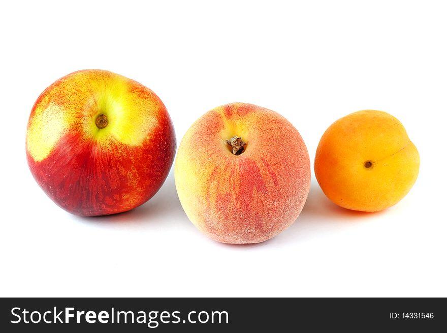 Nectarine, peach and apricot