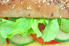 Free Fresh Sandwich With Cheese And Vegetables Stock Photography - 14343082