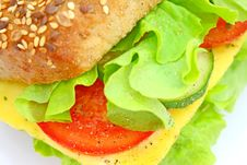 Free Fresh Sandwich With Cheese And Vegetables Royalty Free Stock Photo - 14343085