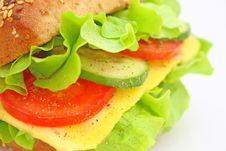 Free Fresh Sandwich With Cheese And Vegetables Royalty Free Stock Photos - 14343088