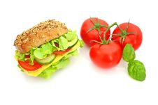 Free Fresh Sandwich With Cheese And Vegetables Stock Images - 14343094