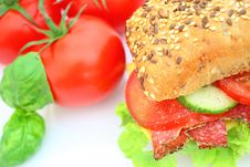 Free Fresh Sandwich With Salami Cheese And Vegetables Stock Photo - 14343110