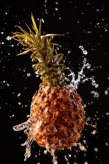 Free Pineapple On A Black Background Stock Photography - 14345562