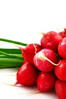 Free Radish And Onion Stock Photography - 14346982