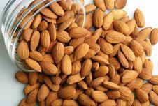 Free Almonds Royalty Free Stock Photos - 14349498