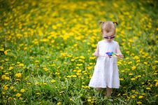 Free Adorable Girl Standing In Dandelions Field Stock Photo - 14349780