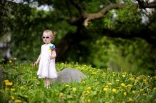 Free Adorable Girl Standing In Dandelions Field Royalty Free Stock Images - 14349829