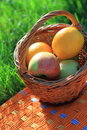 Free Basket With Fruits Stock Images - 14350144