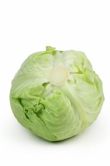 Free Cabbage Royalty Free Stock Photos - 14350568