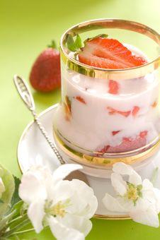 Free Yogurt Stock Photography - 14351132