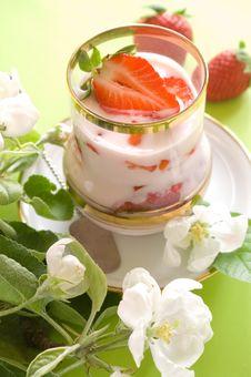 Free Yogurt Royalty Free Stock Photos - 14351148