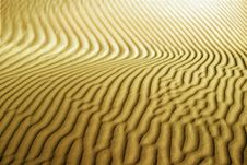 Free Sand Lines Royalty Free Stock Photo - 14353045