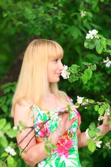 Free Woman Sniffing Flowers Stock Photography - 14354962
