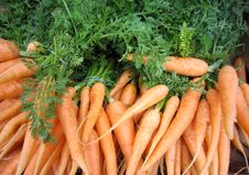 Free Carrots Royalty Free Stock Image - 14355216