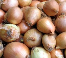 Free Onions Stock Images - 14355244